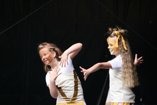 le-stadtfest-12